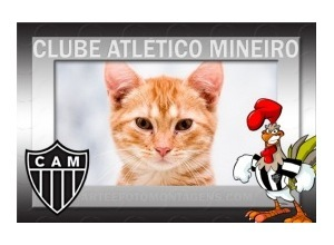 Clube-Atletico-Mineiro