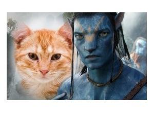 Moldura - Moldura Filme Avatar