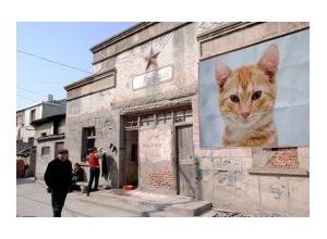 Montagem de foto propaganda na parede