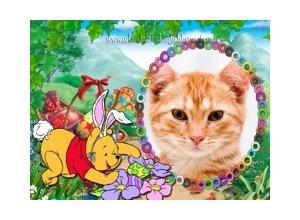 Moldura - Coelhinho Pooh