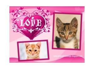 Moldura para duas Fotos - Love Duas Fotos