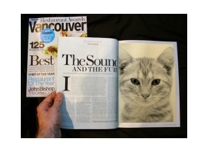 Photomontage revista the sound