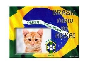 Moldura - Brasil Copa Do Mundo