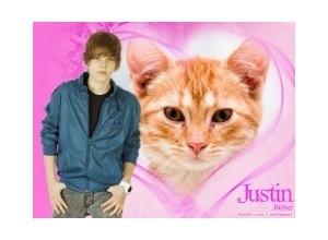 Moldura - Cartor Justin Bieber