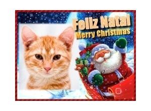 Moldura - Feliz Natal 2011
