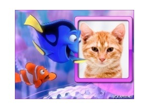 Moldura - Procurando Nemo