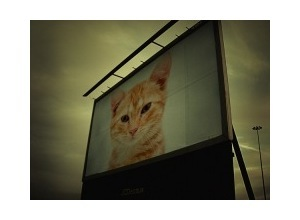 Photomontage Billboard