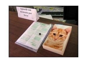 Photomontage livro sobre mesa