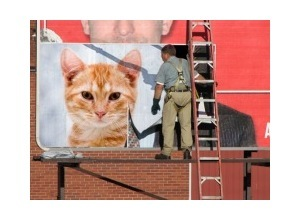 Fotomontajes Homem Colando Banner