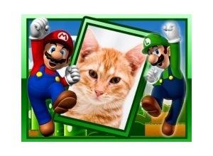 Moldura - Mario E Luigi