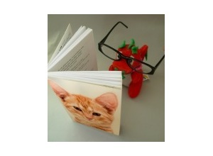 Photomontage livro aberto e oculos