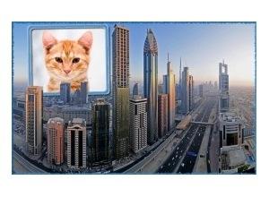 Moldura - Cidade De Dubai