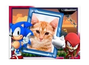 Moldura - Sonic