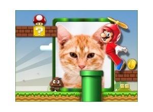 Moldura - Mario Bros