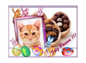 Feliz-Pascoa-Coelhinhos