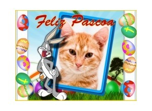Moldura - Feliz Pascoa Perna Longa