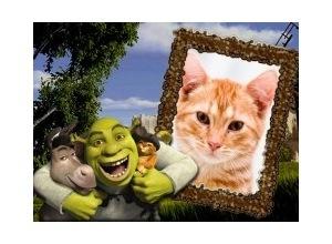 Moldura - Shreck Burro E Gato