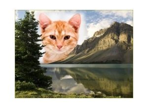 Lago-e-Montanhas