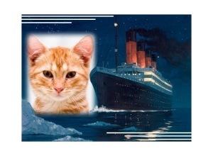 Moldura - Titanic