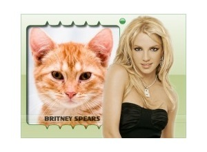 Moldura - Cantora Britney Spears