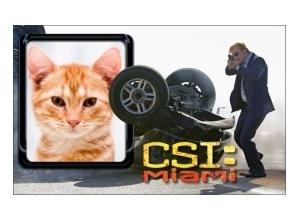 CSI-Miami---Na-mira