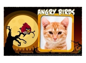 Marco de FotoAngry Birds