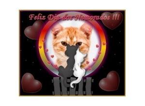Gatinhos-Namorando