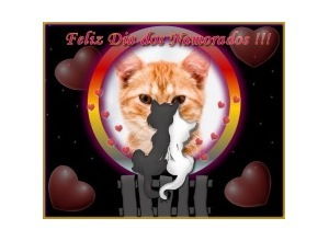 Moldura - Gatinhos Namorando