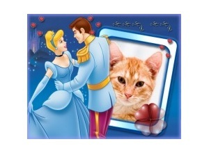 Marco de FotoPrincipe e Princesa