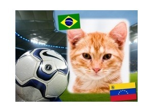Moldura - Brasil Vs Venezuela   Copa America