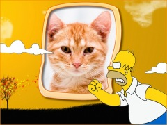 Homer-Simpson-Bravo