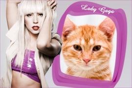 Moldura - Lady Gaga Lilas