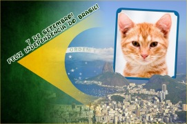 Moldura - 7 Setembro Independencia Do Brasil