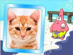 Patrick-bob-esponja