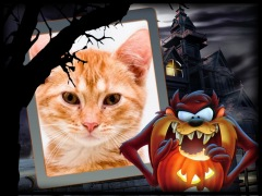 Halloween-do-Taz