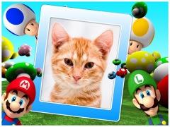 Montagem de FotosSuper Mario