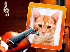 Moldura - Violin