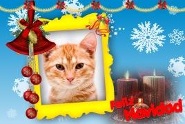 Moldura - Feliz Navidad