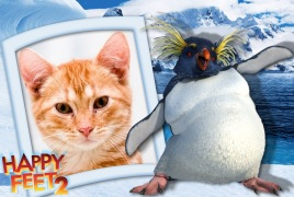 Moldura - Happy Feet 2