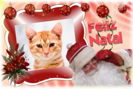 Moldura - Feliz Natal 2012