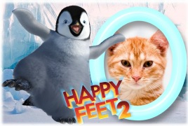 Moldura - Pinguim Happy Feet 2