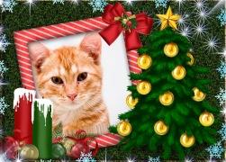 Moldura - Enfeites De Natal