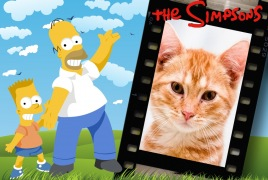 Moldura - Homer E Bart Simpson