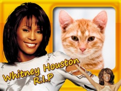 Moldura - Whitney Houston