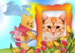 Ursinho-Pooh