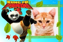 Moldura - Urso Kung Fu Panda 2