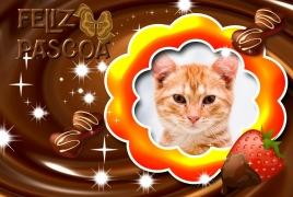 Feliz-Pascoa-Achocolatada
