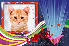 Moldura - Caixa De Amor