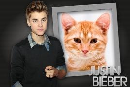 Moldura - Justin Bieber 2012
