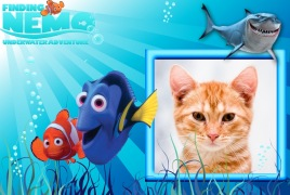 Moldura - Procurando Nemo Underwater Adventure